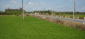 Quản lý và Bảo trì Quốc lộ 60